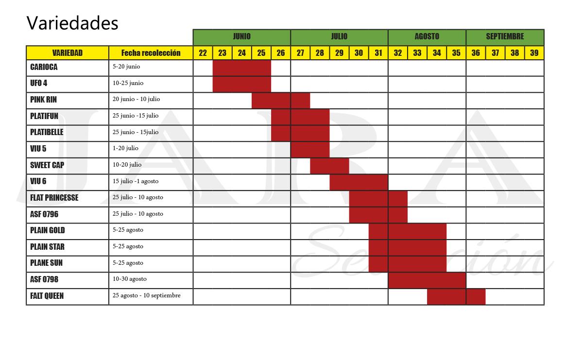 Calendario de variedades de Paraguayo Jara Selección