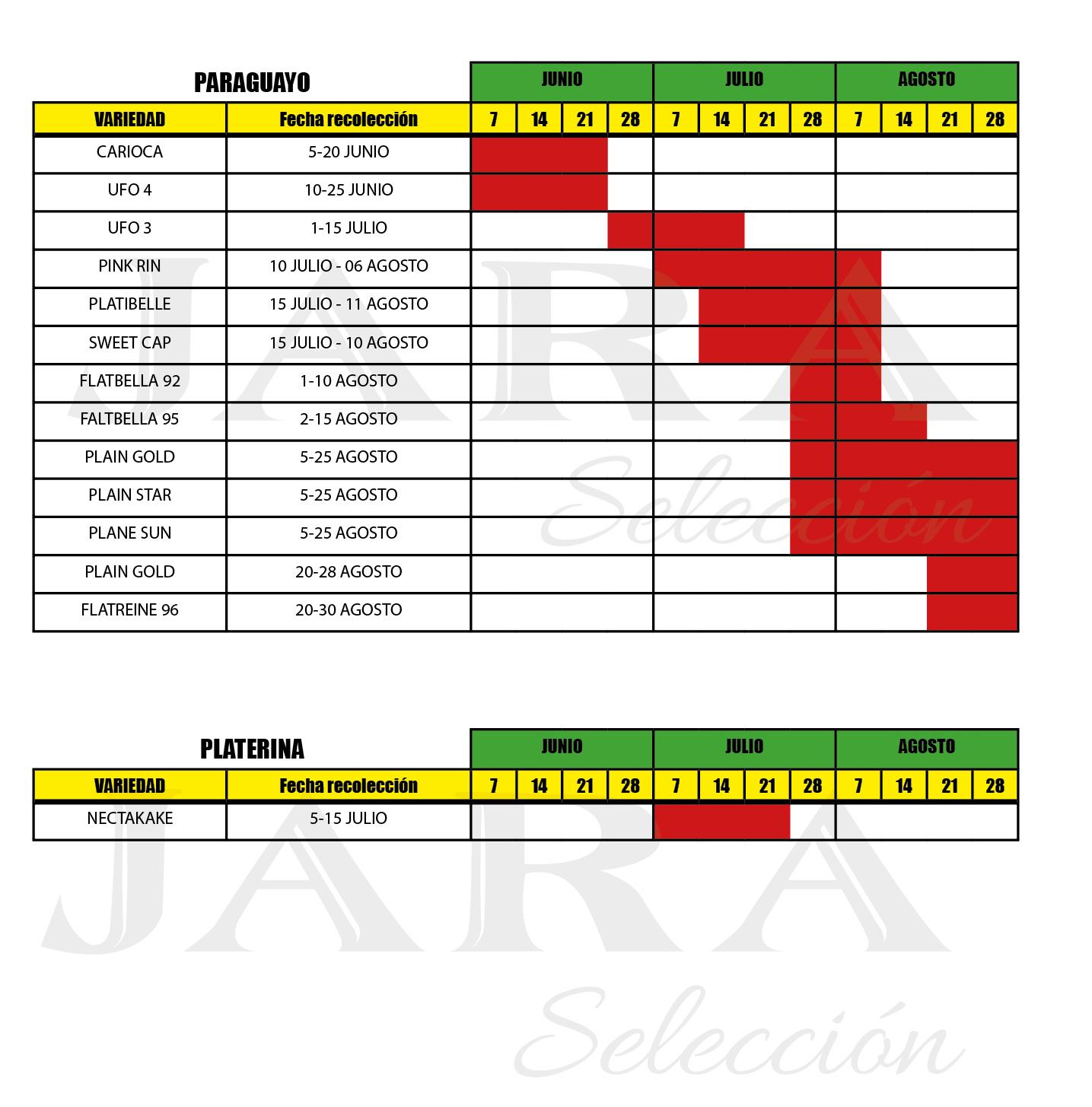 Calendario recolección Paraguayo y Platerina - Huerta Campo Jara