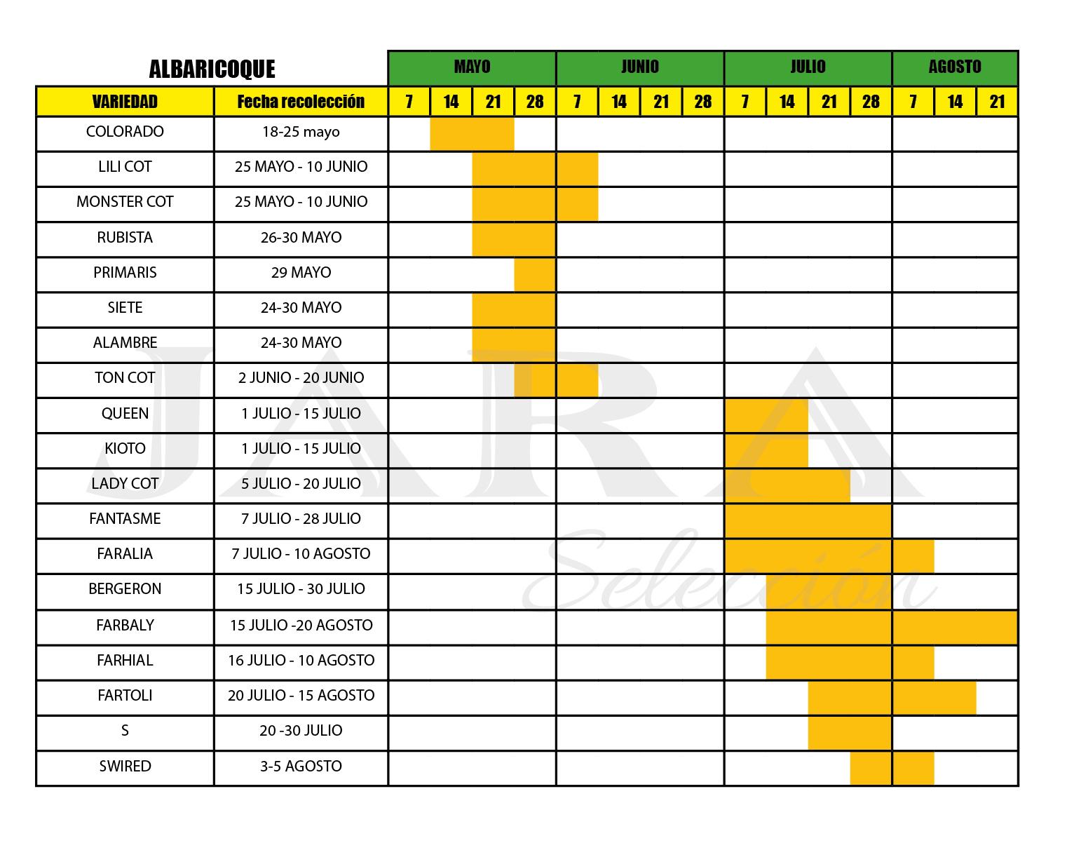 Calendario recolección Albaricoque - Huerta Campo Jara