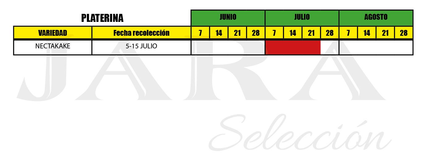 Calendario recolección Platerina - Huerta Campo Jara